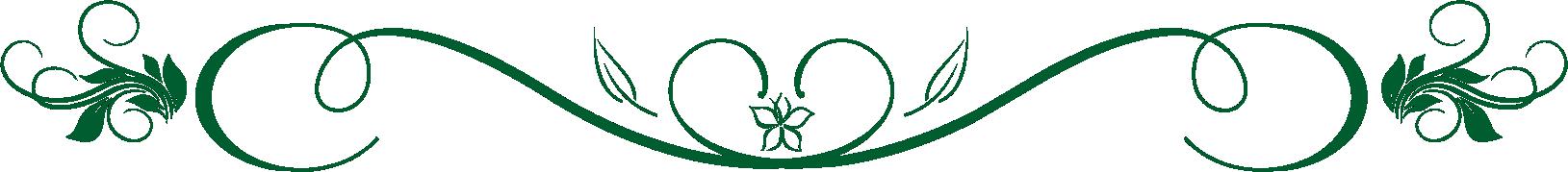 Jardin Cavalia eventos